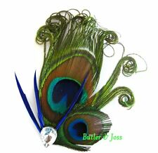 Peacock Feather Hair Clip Pin Accessories Fascinator Handmade in UK 'Belle'