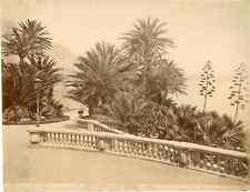 Monaco, Monte-Carlo, Les jardins, Vue générale Vintage albumen print.  Tirage