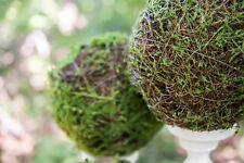 Faux Moss And Wicker Pomander Ball