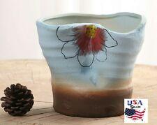 Succulent Plant Flower Ceramic Pot- Blue