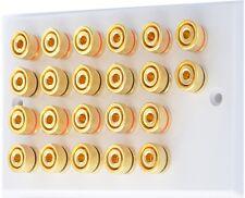 White 11.0 Speaker Wall Plate / Bi Wire Gold 22 Binding Posts