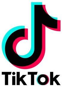 Tik Tok Logo Iron On Transfer Light/Dark Fabrics
