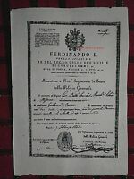 PORTO D'ARMI FUCILE PISTOLE A CAVALLO REGNO DELLE DUE SICILIE(COPY) NAPOLI1800