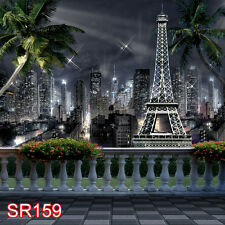 8x8 FT CP (COMPUTER PRINTED) PHOTO SCENIC BACKGROUND BACKDROP SR159