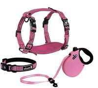 alcott Adventure Retractable Dog Leash or Harness or Collar - Pink S - M - L