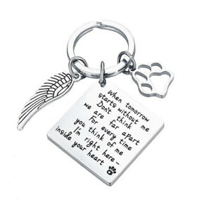 When Tomorrow...In Memory Of Pet Dog Keyring Memorial Angel Wing Heart Keychain