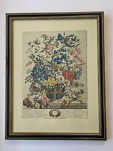 Robert Furber MAY Framed Botanical Print H Fletcher Engraver