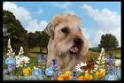 Summer Floor Mat - Wheaten Terrier 39056