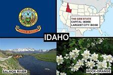 SOUVENIR FRIDGE MAGNET of THE STATE OF IDAHO USA