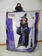 Pre-Owned Costume; Sexy Witch.. Black & Purple Size Large (10-12) Womans