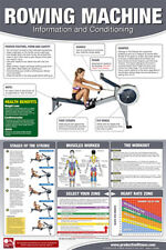 ROWING MACHINE WORKOUT Professional Fitness Gym Wall Chart POSTER (Female Ed'n.)