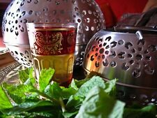 100 graines de MENTHE MAROCAINE(Mentha Spicata NANAH)K27 MAROCCAN MINT SEEDS