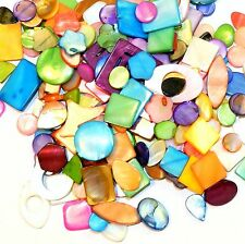 MPXL9910 Mixed Size Shape Color 10-31mm Mother of Pearl Shell 250gm (200* Beads)