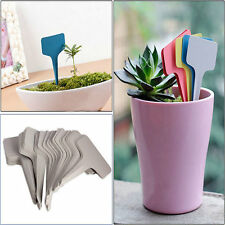 100pcs 6 x10cm Plastic Plant T-type Tags Markers Nursery Garden Labels Pot White