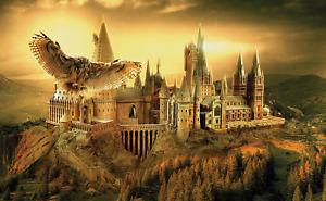 Harry Potter Hogwarts Castle Alley 3D Window Wall Sticker Poster Mural Art 820A