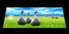 GEESE 3D MOTION  BOOKMARK  BY EMOTION GALLERY  -BM-021