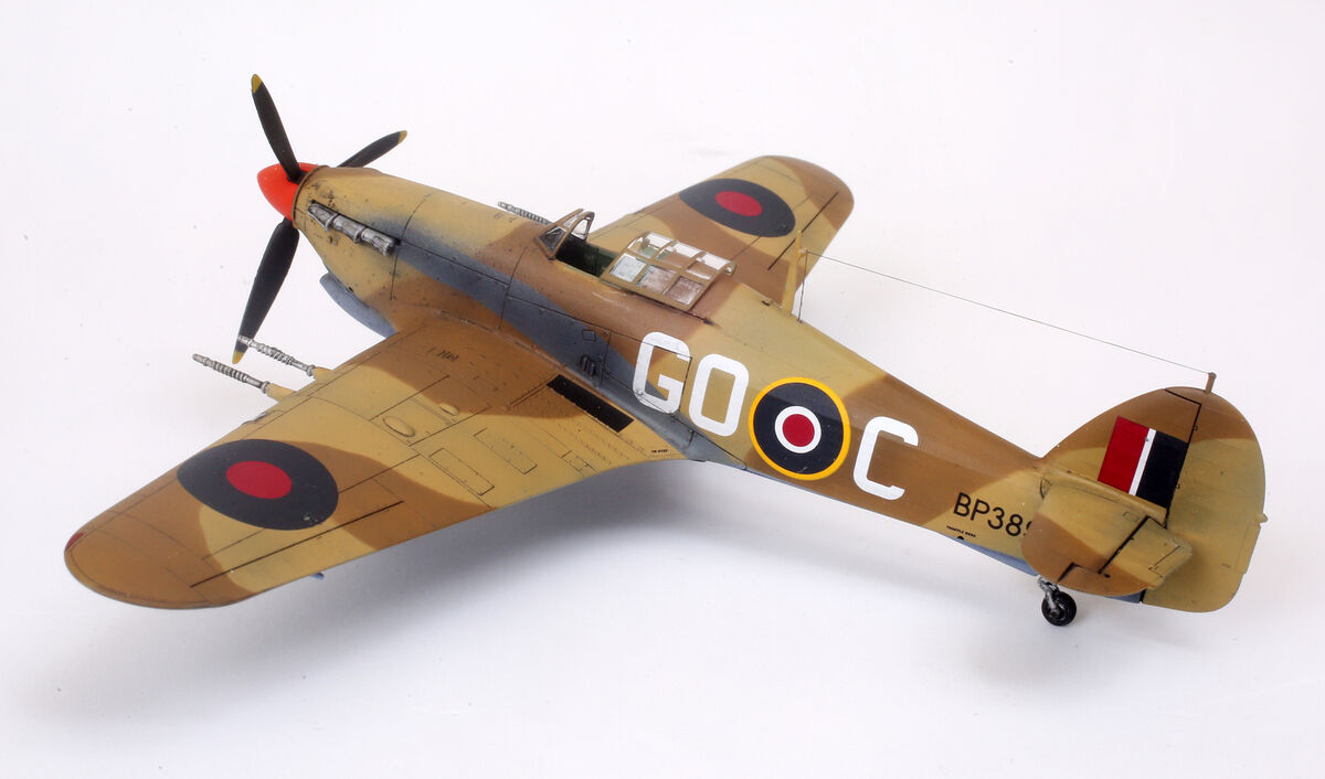 Blackbird Models UK
