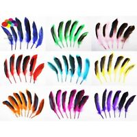 New 10 pcs 100% natural duck feather dyed 10-15cm/4-6inch beautiful Diy Carnival