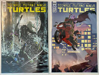 2 Book Teenage Mutant Ninja Turtles 110 / 1:10 Variant Last Ronin Preview TMNT