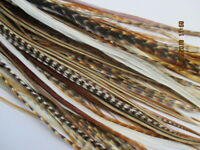 """Hair Feathers 10 mixed natural real Feather Hair Extensions 5-11"""""""