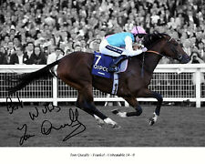 More details for frankel ridden by tom queally 26 signed (horse racing) photo print-keyrings-mugs