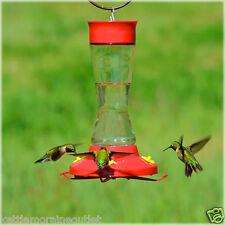 Perky Pet Glass Hummingbird Feeder Removable Perches 16oz 4 Ports #210PB