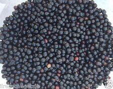 SAMBUCO BACCHE Essiccate Pure BIO* 100 g Frutti Vitaminico Alimentazione/Tisana