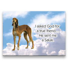 Saluki True Friend From God Fridge Magnet New Dog