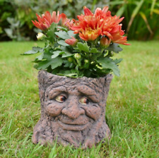 Garden Planter Pot Green Man Novelty Tree Stump Plant Flower Holder Fun LOTR