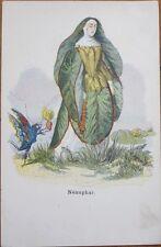 1900 Grandville-Signed, 'Les Fleurs Animées' Flower Postcard: Nenuphar
