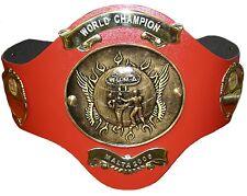 Framed Print - WUMA World Champion Kickboxing Belt (Picture Fight Joe Schilling)