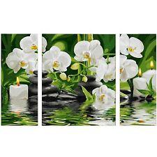 Wellness Oase 50X80~Malen nach Zahlen~ Schipper ~609260681~Orchideen