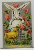 Easter Greetings Large White Bunny and Cute Chick Embossed 1910 Postcard G12