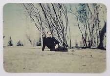 Vintage Photograph Man Relaxing in Grass Gay Interest