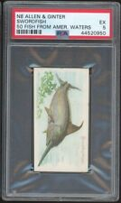 SWORDFISH 1888 N8 Allen & Ginter 50 Fish From American Waters PSA 5 EX