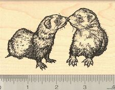 Ferrets Kissing Rubber Stamp, Sable Mask Ferret M3813 WM