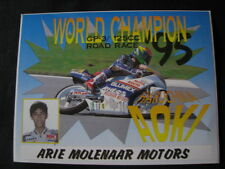 Card Blumex-Rheos Team Molenaar Honda RS125R 1995 Haruchika Aoki (JAP)