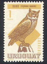 Uruguay 1967 Owls/Birds/Nature/Raptors 1v (n31913)