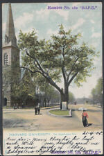 America Postcard - Harvard University, The Washington Elm Tree   RS11250