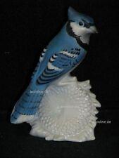 +# A010105_03 Goebel Archiv Muster Vogel Bird Blauhäher Blue Jay 38-527