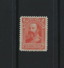 NEWFOUNDLAND - #82 - 2c KING EDWARD VII MINT STAMP MNH ROYAL FAMILY