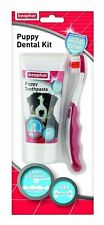 🔥Beaphar Puppy Dental Kit with Enzyme Toothpaste and Bristle Toothbrush ✨✨✨✨