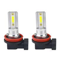 H11 Classic CSP LED Auto Lampe 12V 100Watt  Für PGJ19-2 6500K