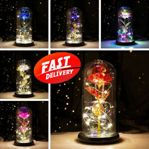 LED Rose In Glass Dome Artificial Eternal Flower Anniversary Birthday Day Gift