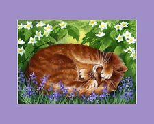 Ginger Cat ACEO Print Mock Orange by I Garmashova