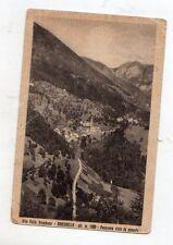 C003741  RONCOBELLO  ALTA  VAL  BREMBANA     PANORAMA    VG  1950