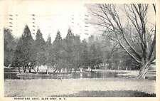 Glen Spy New Hampshire Homestead Lake Scene Antique Postcard K22995