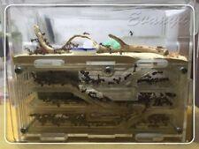 Big Diy Moisture With Feeding Area Ants Nest Farm Villa Acrylic 150mmx54mmx110mm