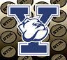 Yale Bulldogs Logo NCAA Die Cut Vinyl Sticker Car Window Bumper Decal