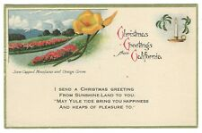 Vtg CHRISTMAS GREETINGS From CALIFORNIA 1910-19 UNPOSTED Postcard ORANGE GROVE